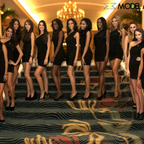 grey-goose-cherry-noir-brand-ambassadors-and-models-by-www-modelmachine-com-for-nba-all-star-weekend-2012-photo-6